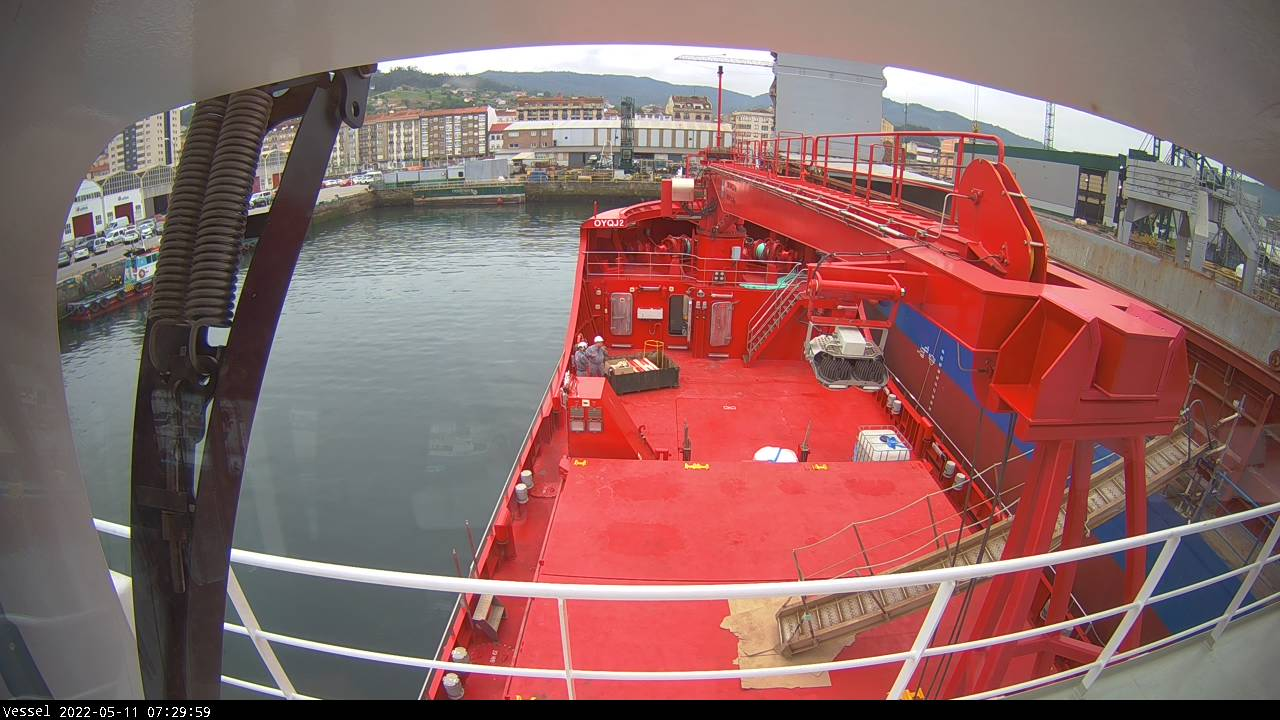 Maleraq Arctica